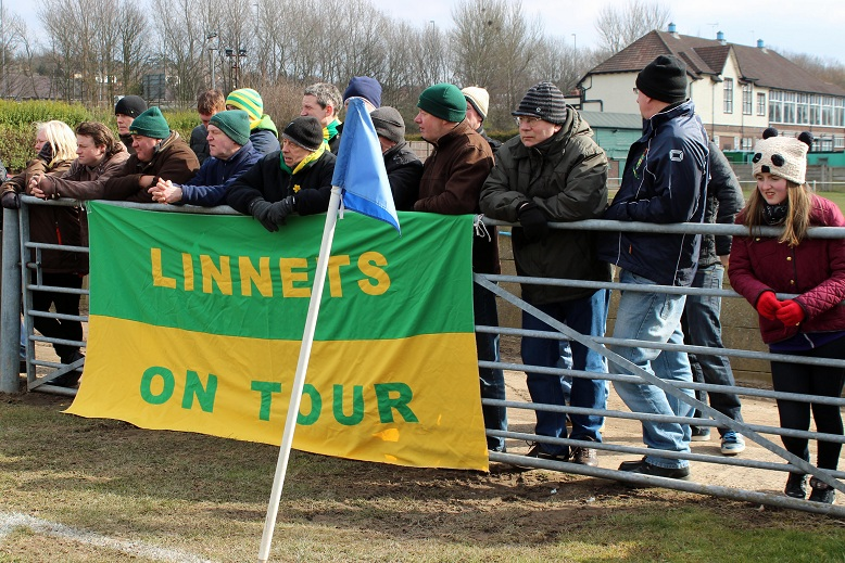"""Linnets on tour"""