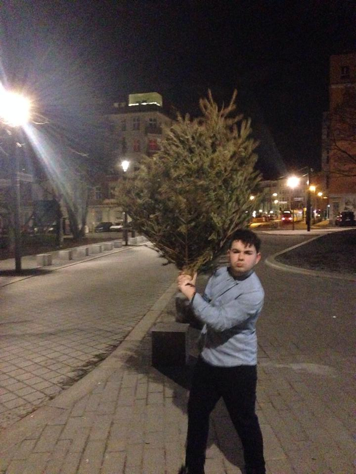 I found a Christmas Tree in East Berlin - Vegetation exists