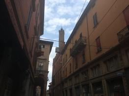 Bologna_Stadio_Renato_DAllara (26)