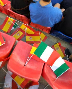 Bologna_Stadio_Renato_DAllara (7)
